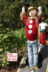 Scarecrow from a previous year at the Fall Garden Festival