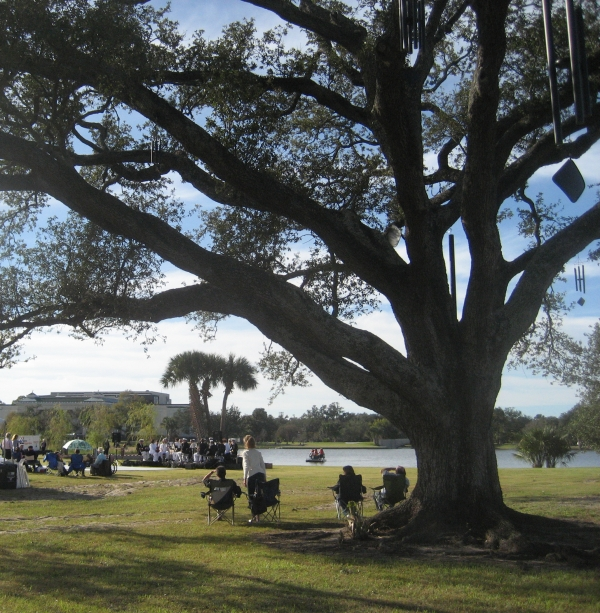 The Singing Oak at Big Lake